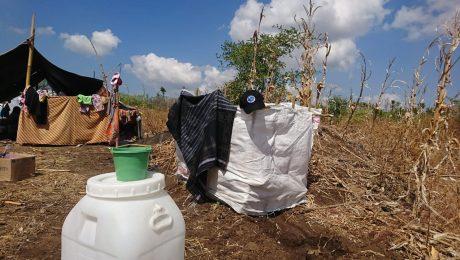 update terbaru korban gempa lombok komite kemanusiaan indonesia
